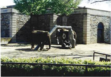 Rennovation – Washington National Zoological Park